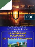 2-Biologia Clase 2 2015 Membrana Plasmatica