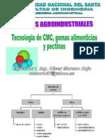 Presentacion3 Tecnologia de Cmcgomas y Pectinas (1)