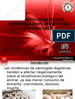 fisiopatología de enfermedades digestivas en porcinos