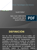 NIA_320 Importancia Relativa