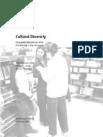 Rapport Cultural Diversity