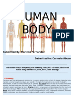 HUMAN BODY.docx