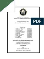 laporan pendahuluan CKD