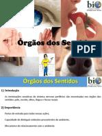 Fisiologia - Órgãos Dos Sentidos (8º Ano)