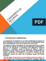 FUNDAMENTO DE RECURSOS.ppt