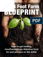 The 4 Foot Farm Blueprint