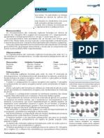 03 Carboidratos e Lipidios