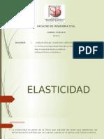 Elasticidad corregida profesor  imprimir.pptx
