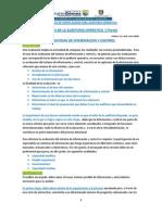 01-Evaluación Del Sistema de Información y Control