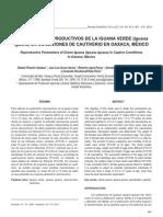 Parametros Reproductivos Iguana Verde