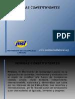 Movimiento de Solidaridad Laboral Reglamento