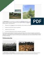 Reforestación, deforestacion y contaminacion.docx