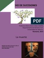 cds-privat-2015-Bien-Derecho-de-Sucesuines.pdf