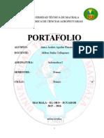 Aguilar Placencio Acua 1 1