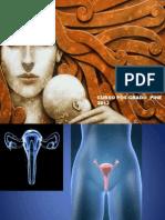 Trastornos Del Eje Gonadal Femenino y Esterilidad
