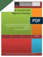 Bases para PDN (aprobadas).pdf