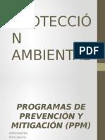 Prevencion y Mitigación