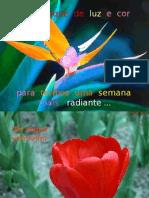 PPT de Cromoterapia - tratamento de doenças através da cor