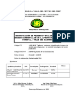 3. Proyecto ambiental