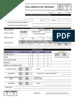 Formato Referencias Laborales 2014