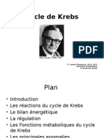 Cycle de Krebs