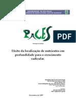 Efeito Da Localização de Nutrientes Em Profundidade Para o Crescimento Radicular [Fundamentos]