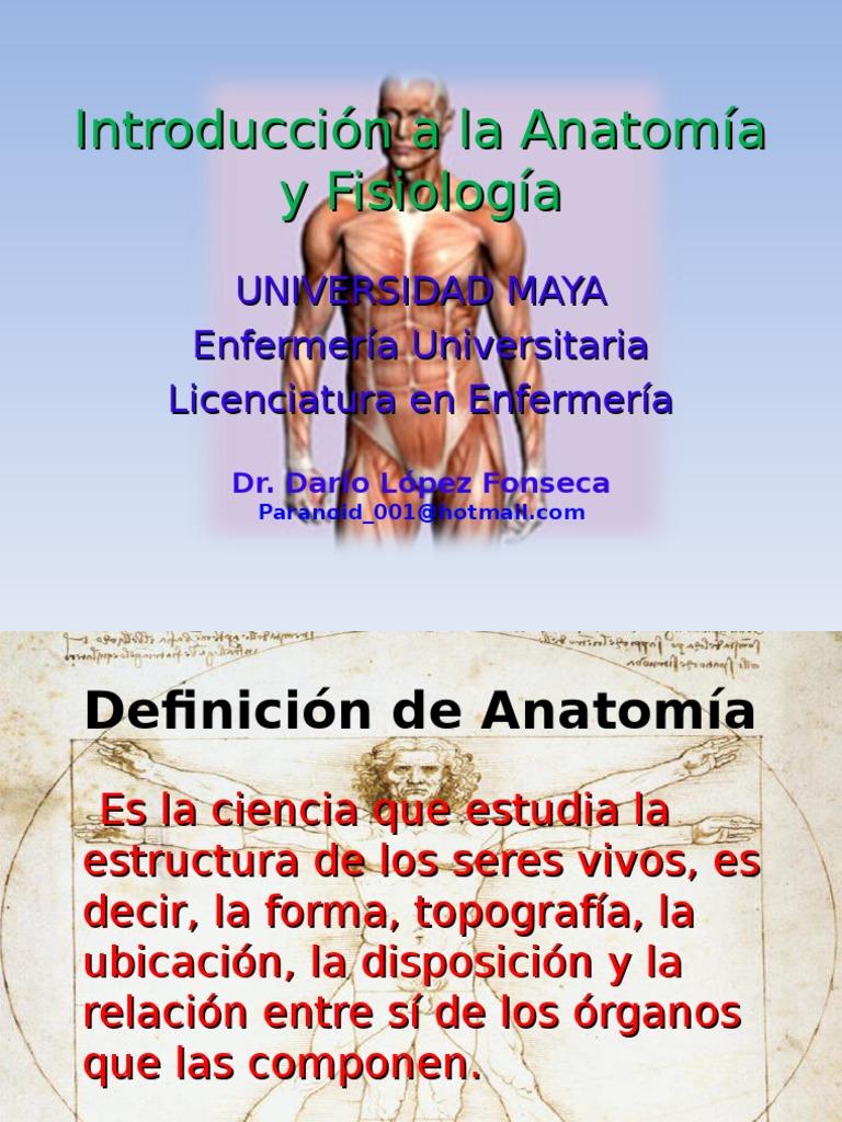 Perfecto Lo Que Quiere Decir Antagonista En La Anatomía Molde ...