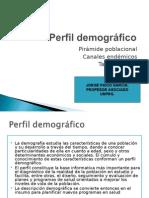 Perfil demográfico