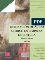 Tesis de Máster.pdf