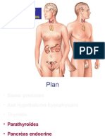 Physiologie Endocrine Partie 3