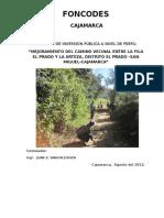 Perfil Camino Vecinal El Prado