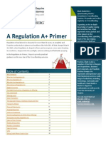 454 a Regulation a Plus Primer Final