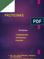 Proteinas i Unidad