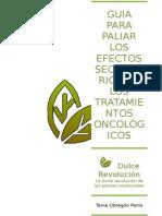 Guia Para Paliar Los Efectos Secundarios de La Quimioterapia