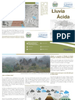 Triptico Lluvia Acida 5 Sep