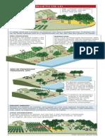 Código Ambiental