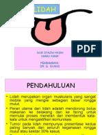 Tumor Lidah