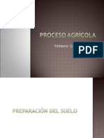 Proceso Agricola