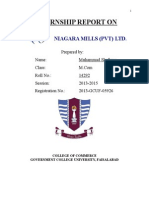 Niagara Internship Report