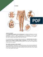 Artritis (descodificación).docx