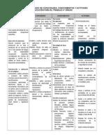 CARTEL DE CAPACIDADES 4° - 5°