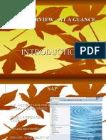 SAP Introduction Presentation