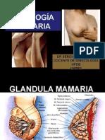 patologia de la mama.ppt