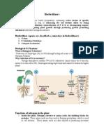 Microbes in Biofertilizers 6-9-15
