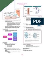 Intro to Virology