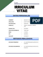 Curriculum Modelo 2015