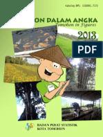 Tomohon-Dalam-Angka-2013.pdf