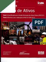 PAS 55-2008 Gestão de Ativos