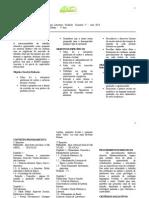 Planejamento Semestral Profº Marcelo Weich