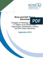 Sarcoma_Updates_in_2013.pdf